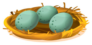 Ein Nest mit drei Eiern Lizenzfreie Stockfotos