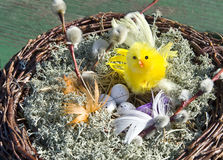 Ein Nest mit einem Huhn und Eiern Lizenzfreies Stockfoto