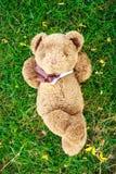 Ein netter Teddybär, der auf Gras und Notizbuch liegt, um zu füllen Lizenzfreie Stockfotografie