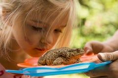 Ein nettes junges Mädchen, das Kröte (Frosch, betrachtet) Stockfoto