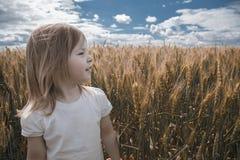 Ein nettes kleines Mädchen an einem sonnigen Tag des Sommers ist auf einem Gebiet des Weizens Stockbilder