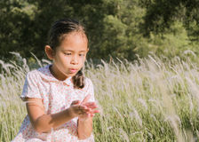 Ein nettes Mädchen auf einem Feld Stockbilder