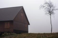 Ein neues hölzernes Häuschen, das neben einer jungen Birke in einem Nebel steht Lizenzfreies Stockfoto