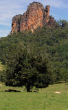 Ein Nimbin-Felsen Lizenzfreies Stockfoto