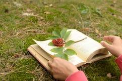 Ein offenes Buch auf dem Gras verziert mit einer Niederlassung mit Beeren Lizenzfreie Stockfotografie