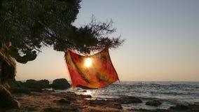 Ein orange pareo, das von einem Baum an einem Strand hängt Lizenzfreie Stockbilder