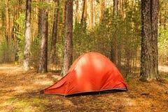 Ein orange Zelt auf einem Campingplatz in einem Wald an einem sonnigen Tag nach Regen Lizenzfreie Stockfotografie