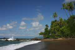 Ein Ozeanstrand stockbild