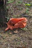Ein Paar alte und schmutzige orange Gummihandschuhe, weggeworfen, ohne Sorgfalt, nahe einer Palme, in einem großen Park stockfotografie