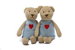Ein Paar der liebevollen Bärnpuppe Lizenzfreie Stockbilder