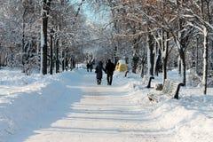 Ein Paar in einem Winterpark Stockbilder