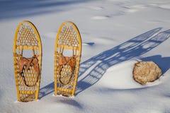 Bärenprankeklassiker Snowshoes Lizenzfreie Stockfotos