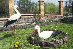 Ein Paar Störche im Garten Lizenzfreie Stockbilder