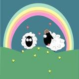 Ein Paar weiße Schafe auf einem grünen Hügel Stockfotos