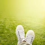 Ein Paar weiße Trainer im Gras im Sonnenschein lizenzfreie stockfotografie