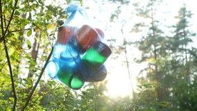 Ein Paket des Plastikabfalls im Wald hängend an einem Baumast, Nahaufnahme, Naturverschmutzung durch den Abfall, sonnig stock footage