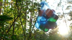 Ein Paket des Plastikabfalls im Wald hängend an einem Baumast, Nahaufnahme, Naturverschmutzung durch den Abfall, sonnig, Sänfte stock video