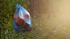 Ein Paket des Plastikabfalls im Wald hängend an einem Baumast, Nahaufnahme, Naturverschmutzung durch den Abfall, sonnig, Sänfte stock footage