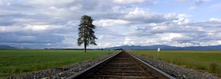 Ein Panorama der Spuren durch ein Feld. Lizenzfreies Stockbild
