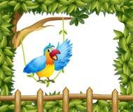 Ein Papagei und die belaubte grüne Grenze Stockbilder