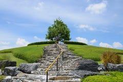 Ein Park bei königlicher Flora Park Der berühmte allgemeine Park im chiangmai Stockfotografie