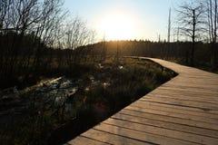 Ein Park in Litauen Lizenzfreies Stockbild