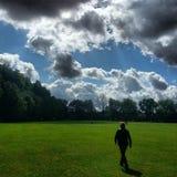 Ein Park und ein Ingwer Lizenzfreie Stockbilder