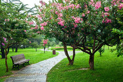 Ein Park unter dem Regnen Lizenzfreies Stockfoto
