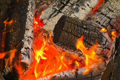 Ein perfektes Lagerfeuer in Rocky Mountains Stockbilder