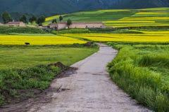 Ein Pfad führt zu das Dorf stockfotos