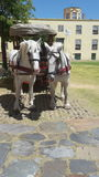 Ein Pferd an den alten Schleppseilen stockfotografie