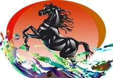 Ein Pferd im Sonnenuntergang und in den Wellen Lizenzfreie Stockfotos