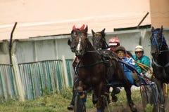 Ein Pferderennen Stockfoto