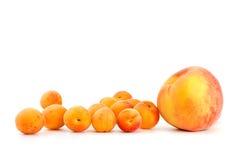 Ein Pfirsich und wenige Aprikosen Stockfotografie