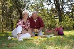 Ein Picknick haben stockbild
