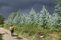 Ein Pilger auf der Straße mit drohenden Regenwolken lizenzfreie stockfotos
