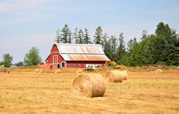 Ein pitoresque Bauernhof, Zustand von Washington lizenzfreies stockbild