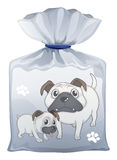 Ein Plastikbeutel mit einem Bild von zwei netten Hunden Lizenzfreie Stockfotos
