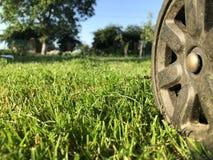 Ein Rad von einem Rasenmäher auf einem truncheted Bauernhofrasen stockfoto