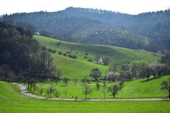Ein Radfahrer auf einer Spur in einer schönen Landschaft im frühen Frühjahr im Odenwald, Deutschland stockfoto