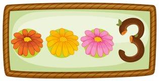 Ein Rahmen mit drei Blumen Stockfotografie