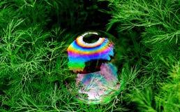 Ein Regenbogen in einer Blase Lizenzfreie Stockbilder