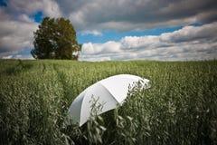 Ein Regenschirm Lizenzfreie Stockfotos