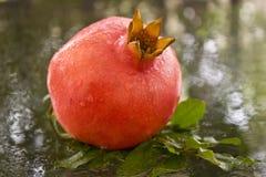 Ein reifer Granatapfel mit Tropfen des Wassers Lizenzfreie Stockfotos