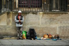Ein Reisender und seine Haustiere auf den Straßen von Paris Lizenzfreies Stockbild
