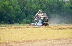 Reis-Ernte-LKW Stockbild