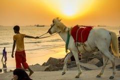 Ein Reitenjunge, der ihre Kunden auf Patenga-Strand, Chittagong, Bangladesch sucht Stockfotografie
