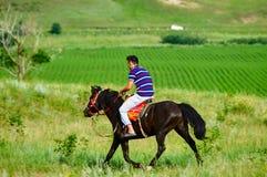 Ein Reiter auf der Wiese Lizenzfreies Stockfoto