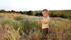 Ein reizend Kind mit einem Lutscher in der Natur stock footage