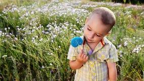 Ein reizend Kind mit einem Lutscher in der Natur stock video